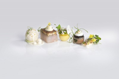 Fish dish Bocuse d'Or Europe 2014